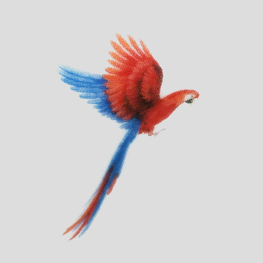 Internal Parrot Mug Graphic